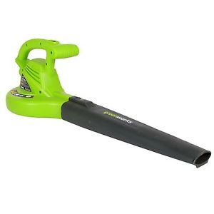 Greenworks 24012 7-Amp Single Speed Electric Leaf Blower review