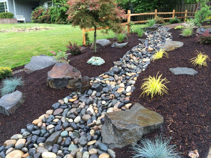 Dry creek bed design ideas